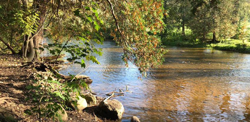Photo of Lowville Park